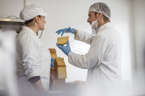 Cheese factory workers testing quality of cheese - ZEF11040