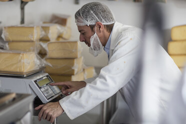 Cheese factory worker weighing packaged cheese - ZEF11046