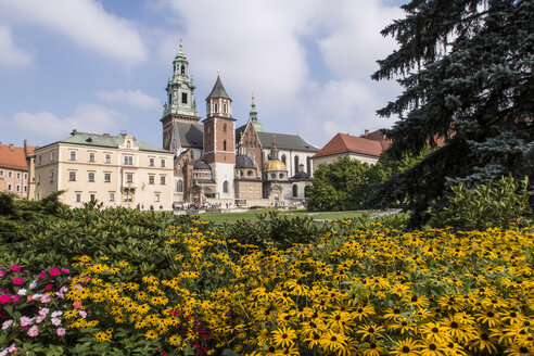 Poland, Krakow, view to Wawel Cathedral - MELF00157