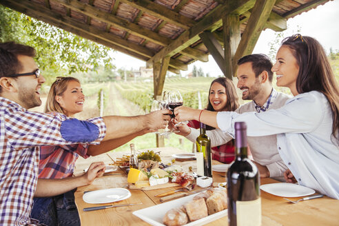 Friends clinking red wine glasses at table in vineyard - ZEDF00380