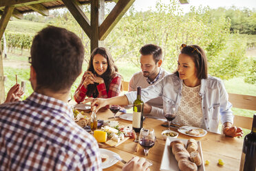 Friends socializing at outdoor table with red wine and cold snack - ZEDF00395