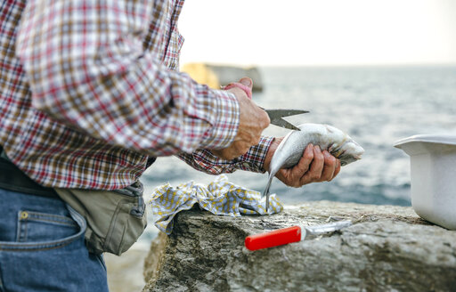 Senior man cutting caught fish - DAPF00444