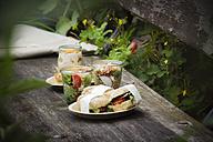 Picnic with vegetarian snacks on bench - EVGF03100