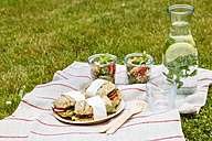 Picnic with vegetarian snacks on meadow - EVGF03103