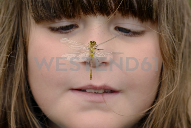 Girl watching dragonfly sitting on her nose - MJOF01305