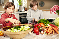 Boy and girl chopping vegetables in the kitchen - TSFF00131