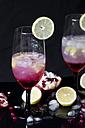 Gin Daisy - YFF00586