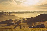 Austria, Muhlviertel, Autumnal landscape at sunrise - FCF01115