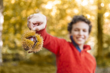 Hand of boy holding sweet chestnut in the autumnal forest - DIGF01416