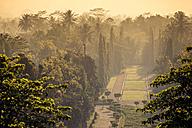 Indonesia, Java, Borobudur Temple Complex - KNTF00559