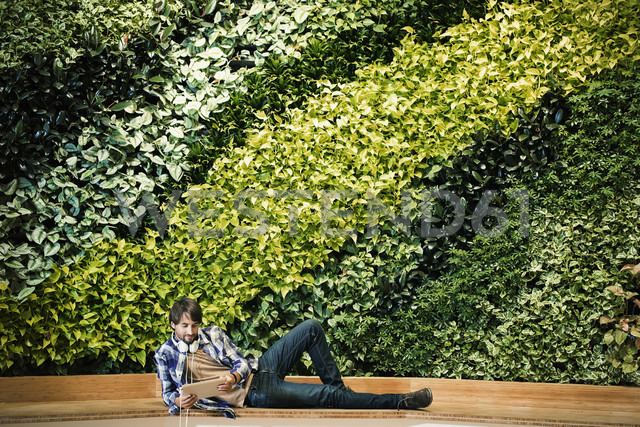 Young man sitting infront of green plant wall, using digital tablet - WESTF21911