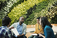Young business people discussing in front of green plant wall - WESTF21914