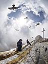 Switzerland, Emmental Alps, Alpine choughs at Pilatus-Kulm mountain station - LAF01800