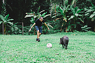 Peru, Man playing football with a peccary - GEMF01224
