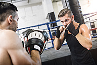 Boxer sparring with coach - MADF01238