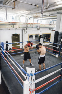 Two boxers fighting in boxing ring - MADF01277