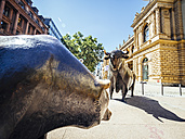 Germany, Frankfurt, bull and bear bronze sculptures at Stock Exchange - KRP01975