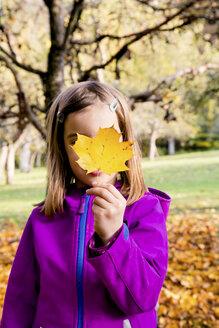 Little girl hiding her face behind an autumn leaf - LVF05595