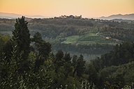 Italy, Tuscany, rolling landscape and forest near Lucca - FCF01120