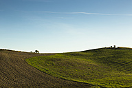 Italy, Tuscany, Val d'Orcia, rolling landscape - FCF01148