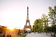 France, Paris, Champ de Mars, view to Eiffel Tower at sunset - GEM01268