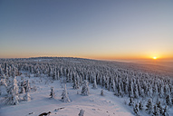 Germany, Lower Saxony, Harz National Park, Wolfswarte in winter at sunset - PVCF00935