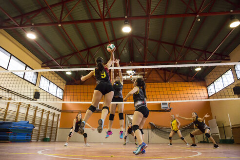Volleyball player spiking the ball during a volleyball match - ABZF01557
