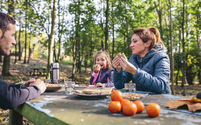 Family having picnic in the woods - DAPF00492
