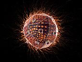 Virus, 3D Rendering - SPCF00136