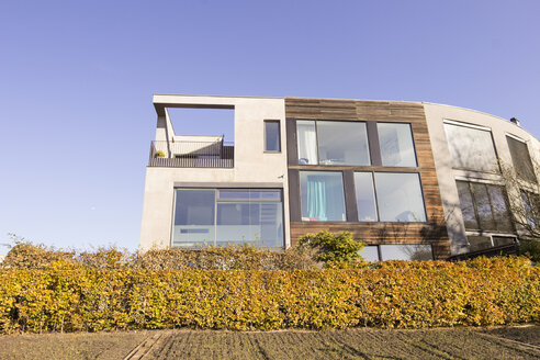 Modern residential house behind autumnal hedge - CM00624