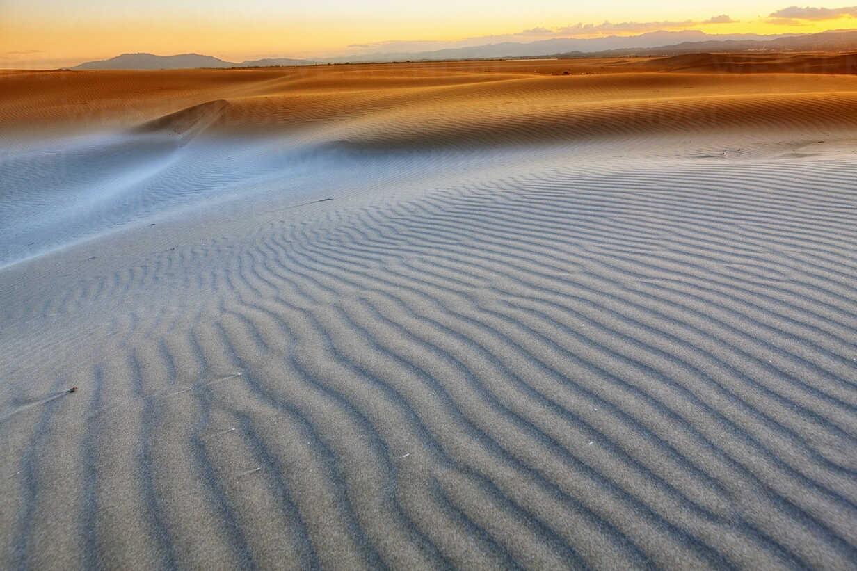 Spain, Tarragona, Ebro Delta, dune at sunset - DSGF01171 - David Santiago Garcia/Westend61