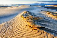 Spain, Tarragona, Ebro Delta, dune at twilight - DSGF01174