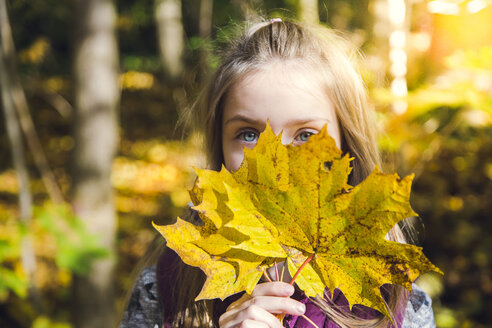 Little girl hiding her face behind  autumn leaves - SARF03079