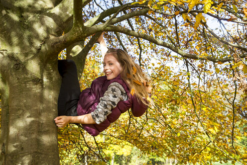 Girl climbing on tree in autumn - SARF03082