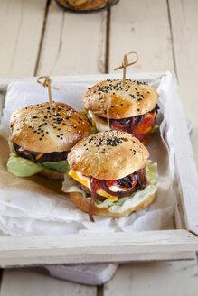 Homemade Cheeseburger - SBDF03087