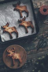 Elk-shaped Christmas cookies - RTBF00547