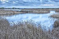 Spain, Laguna de la Nava - DSGF01189