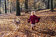 Red Riding Hood, Girl running in forest with husky - MJF02087
