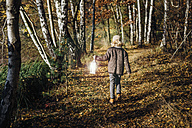 Hansel and Gretel, Boy walking in forest, carrying lantern - MJF02096