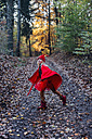 Little imp running in forest in forest - MJF02102