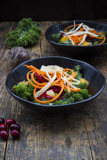 Salad with kale, beetroot, parsnips, carrots, orange and wolfsberries - LVF05680