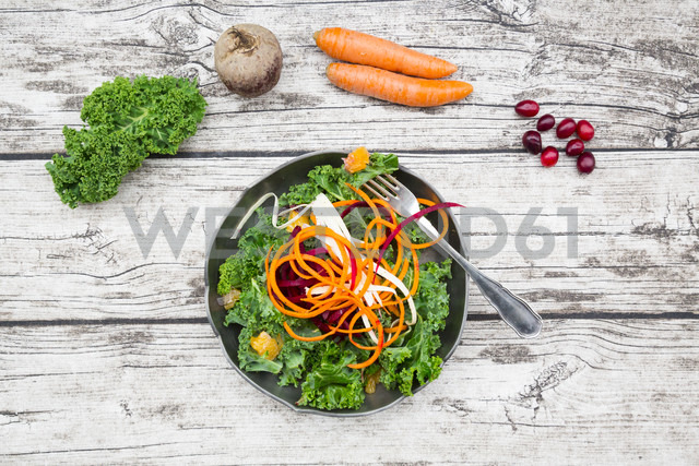 Salad with kale, beetroot, parsnips, carrots, orange and wolfsberries - LVF05686