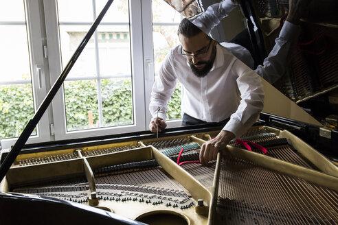 Piano tuner tuning grand piano - ABZF01604