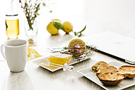 Breakfast table with honeycomb and honey dipper - JRFF01109