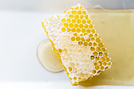 Honeycomb and honey on plate - JRFF01112
