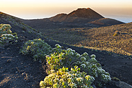 Spain, Canary Islands, La Palma, lava landscape on the Cumbre Nueva - DSGF01382