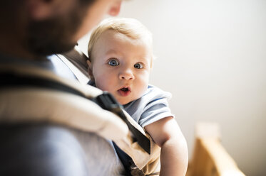 Happy father with baby in baby carrier at home - HAPF01236