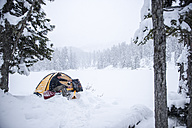 Senior man camping in snow-covered landscape - HHF05483