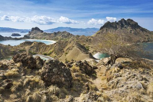 Indonesia, Nusa Tenggara Timur, Nationalpark Komodo, Padar Island - FPF00124