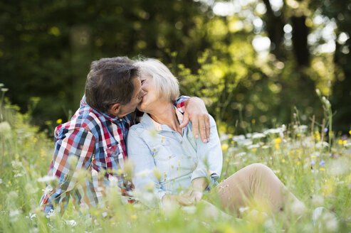 Senior couple kissing on a meadow - HAPF01240
